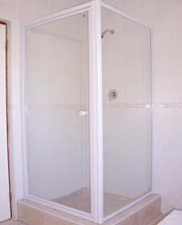 Framed pivot shower door with panel